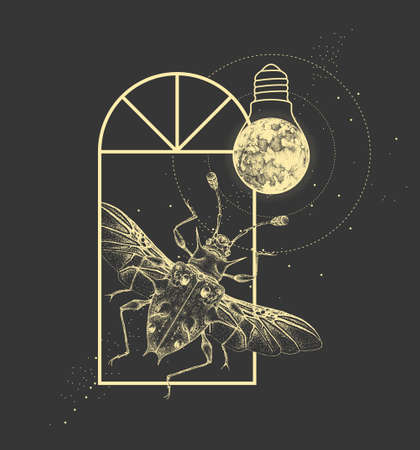 Magic witchcraft window silhouette with Endomychidae beetle and full moon like light bulb. Vector illustration