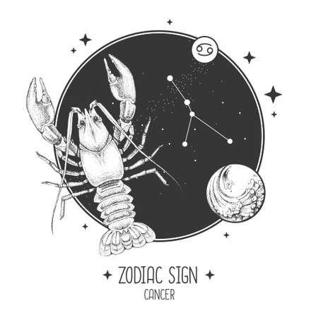 Modern magic witchcraft card with astrology Cancer zodiac sign. Realistic hand drawing lobster illustration. Zodiac characteristic