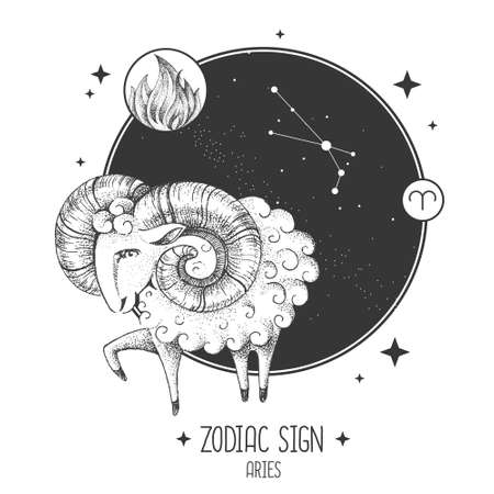 Modern magic witchcraft card with astrology Aries zodiac sign. Realistic hand drawing ram or mouflon. Zodiac characteristic