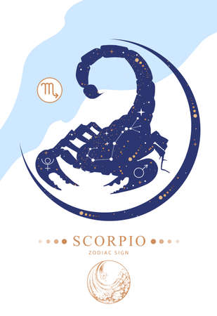 Modern magic witchcraft card with astrology Scorpio zodiac sign. Zodiac characteristic