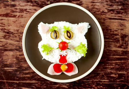 baby rice: Baby rice dish in the form of a cat.