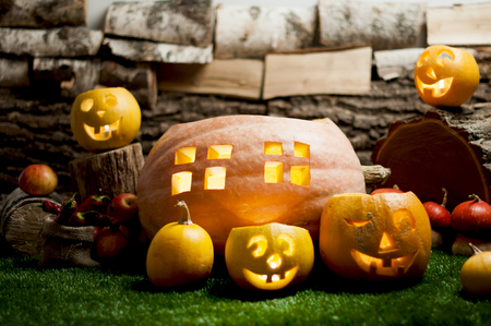 bark carving: Halloween still life with carved pumpkins on grass.