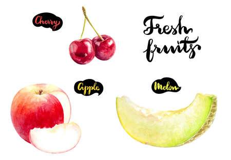 Apple cherry melon watercolor hand draw illustration.