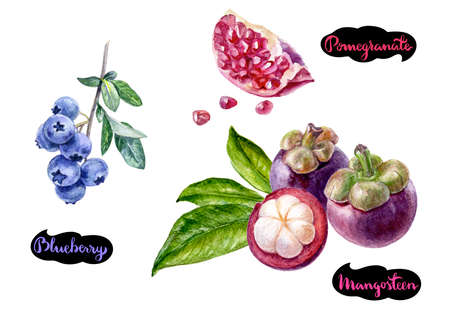 mangosteen blueberry pomegranate