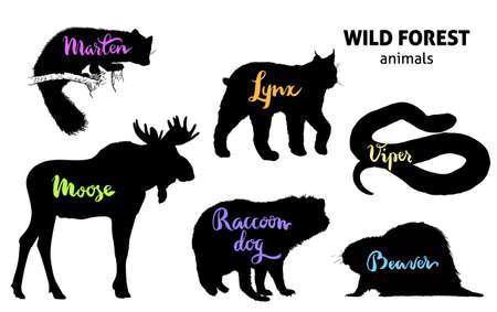 Wild forest animals set. Moose, marten, lynx, raccoon dog, beaver, viper