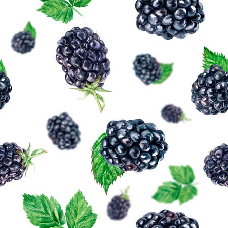 Watercolor hand drawn blackberry isolated seamless pattern.