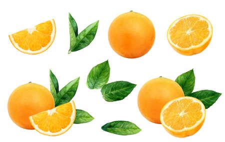Orange set watercolor illustration isolated on white background