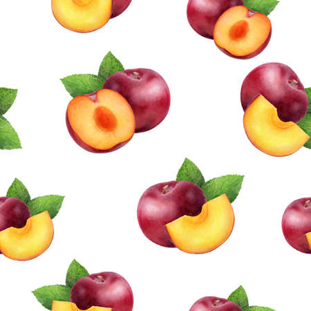 Watercolor hand drawn plum isolated seamless pattern.