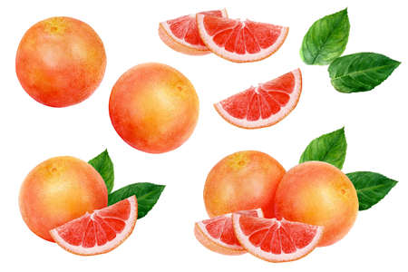 Grapefruit set watercolor isolated on white background Stok Fotoğraf - 130111095