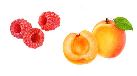 Apricot raspberry set composition watercolor isolated on white background
