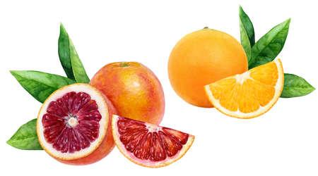 Orange blood orange set composition watercolor isolated on white background