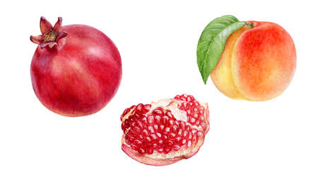 Pomegranate peach fruits set watercolor hand drawn illustration isolated on white background. Фото со стока