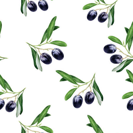 Black olives hand drawn watercolor illustration. Seamless pattern. Reklamní fotografie