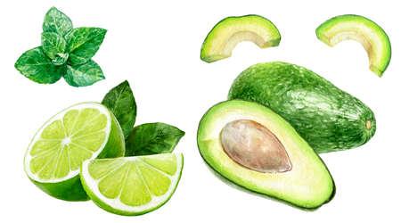 Avocado lime mint set watercolor isolated on white background Reklamní fotografie