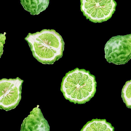 Bergamot fruit hand drawn watercolor illustration. Seamless pattern. Reklamní fotografie