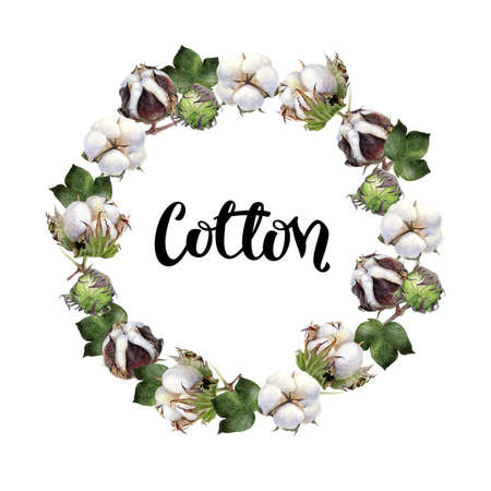 Cotton round frame watercolor hand drawn illustration isolated on white background.