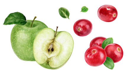 Green apple cranberry watercolor illustration isolated on white background