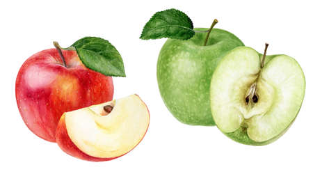 Set of red and green apples watercolor illustration isolated on white background