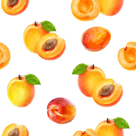Watercolor seamless pattern apricots isolated on white.