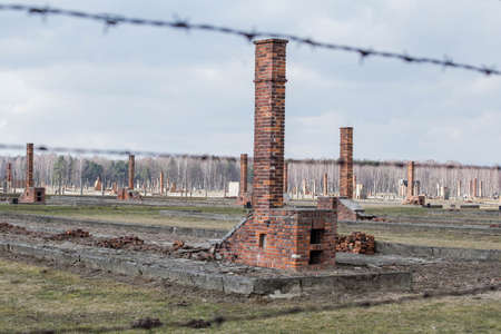 Auschwitz II Birkenau, ruins of barracks at Birkenau. Stoves and chimneys are all that remains of old wooden concentration camp barracks March 12, 2019