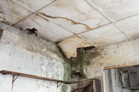 Damaged ceiling from water leak in old abandoned house