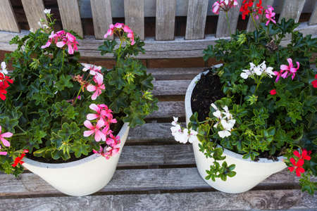 Two garden pots filled with colorful flowers on a wooden bench