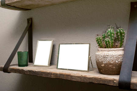 Two blank picture frames and cactus decoration on wooden shelf, industrial retro interior design Reklamní fotografie