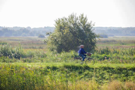 Person riding a bicycle in a green park, nature landscape in the Netherlands