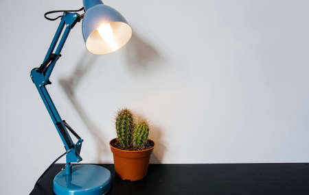 An office desk lamp, modern workspace with cactus, space for text