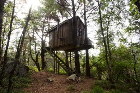 Treehouse, Norway, September 2018, Stavanger forest