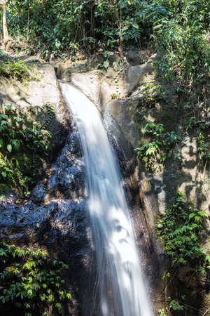 View of waterfall and greenish forest landscape, Rainforest in Bali Archivio Fotografico - 131342671