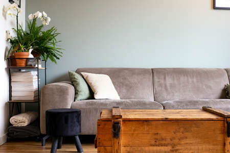 modern retro light living room with grey sofa and various colored pillows, current trend
