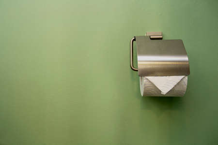 Close-up of toilet roll holder in bathroom near green wall close-up