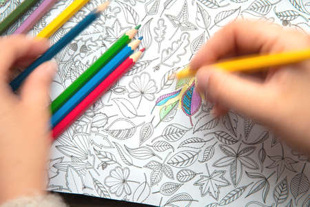 Netherlands, July th 2020, An image of a new trendy thing called adults coloring book.