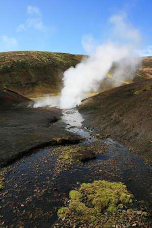 damp: Caldo umido versando della terra