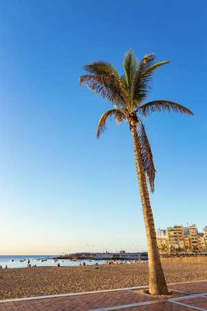 Beach in Las Palmas, Gran Canaria, Spain Banco de Imagens