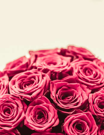 Blooming rose, flower blossom and Valentines Day gift concept - Romantic luxury bouquet of pink roses, flowers in bloom as floral holiday background Imagens