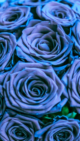 Blooming rose, flower blossom and Valentines Day gift concept - Glamour luxury bouquet of blue roses, flowers in bloom as floral holiday background