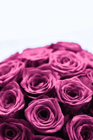 Blooming rose, flower blossom and Valentines Day gift concept - Luxury bouquet of purple roses, flowers in bloom as floral holiday background