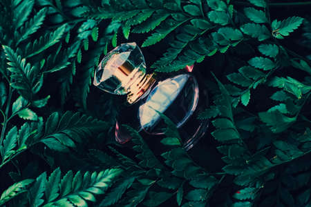 Perfume bottle with aromatic tropical scent in nature, luxury summer fragrance