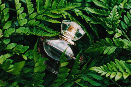 Perfume bottle with aromatic tropical scent in nature, luxury summer fragrance Standard-Bild