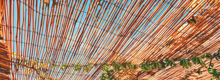 Wooden roof on the beach, nature and design