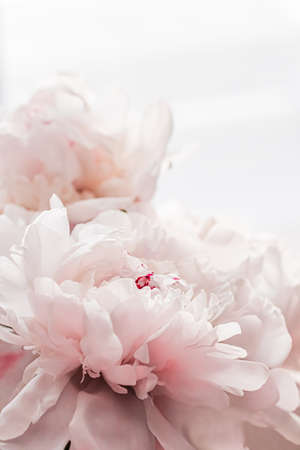 Bouquet of peony flowers as luxury floral background, wedding decoration and event branding design Foto de archivo