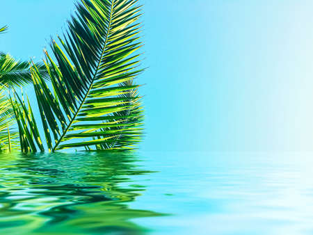 Palm tree leaves and sea water, summertime travel and beach background Stock fotó