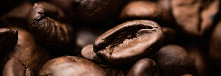 Coffee beans background, roasted signature bean with rich flavour, best morning drink and luxury blend