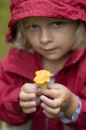 A little girl dressed in a rain coat is holding up a small yellow chanterelle photo