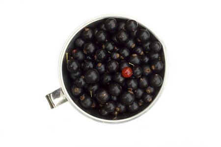 A jug full of black currants, with one red black currant sticking out. Isolated on white Stock Photo - 7632570