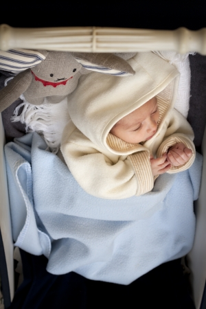 Newborn tucked into a baby stroller with a rabbit soft toy, warm and cuddly with a cardigan with a hood  photo