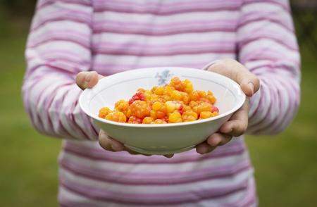 chicouté: Un enfant tenant une assiette pleine de mûres mûres