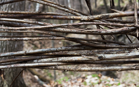 Fragment of the fence woven from branches. Close-up. Horizontal rectangular photo.